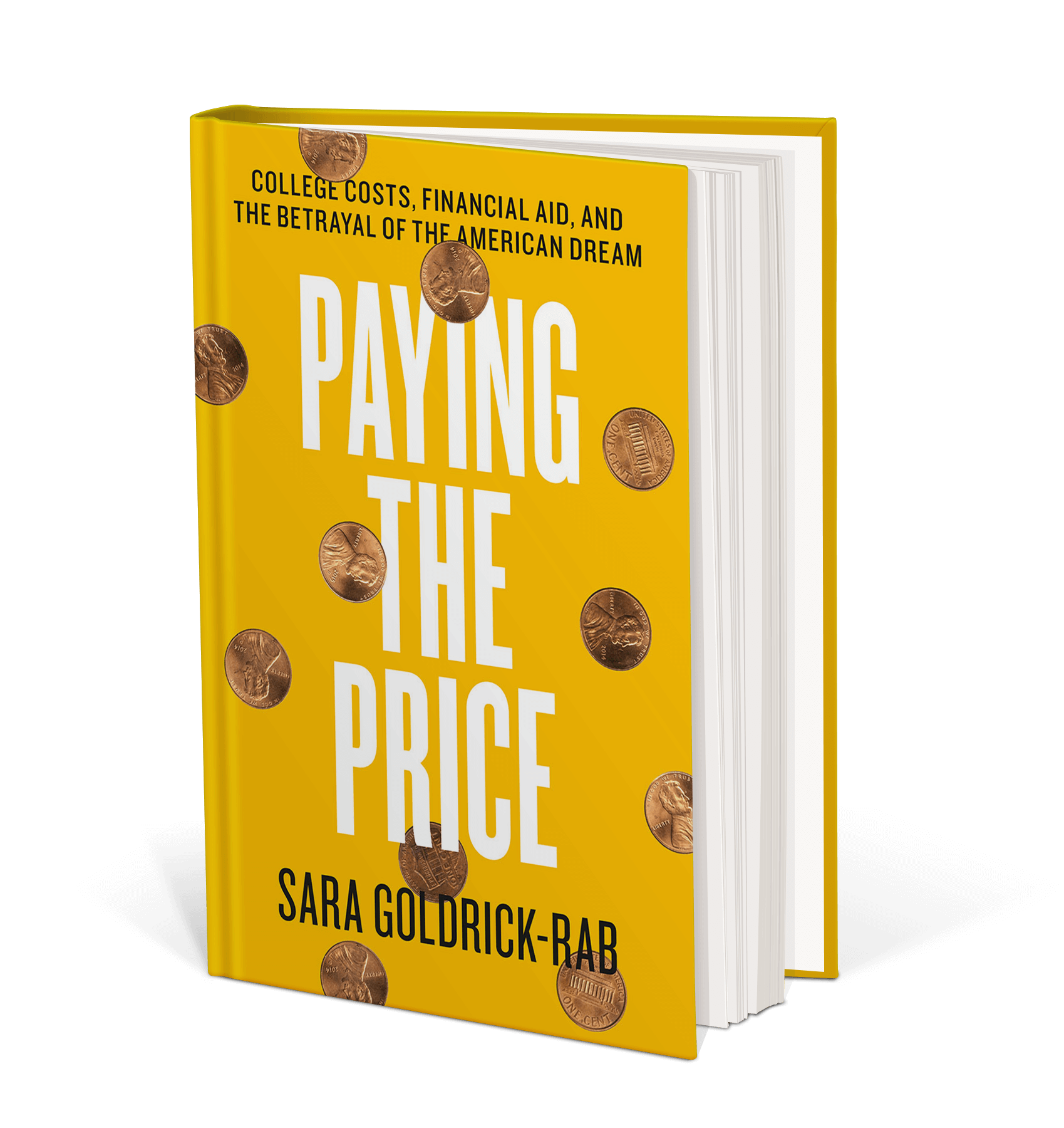 Cover art for Paying the Price : College Costs, Financial Aid, and the Betrayal of the American Dream