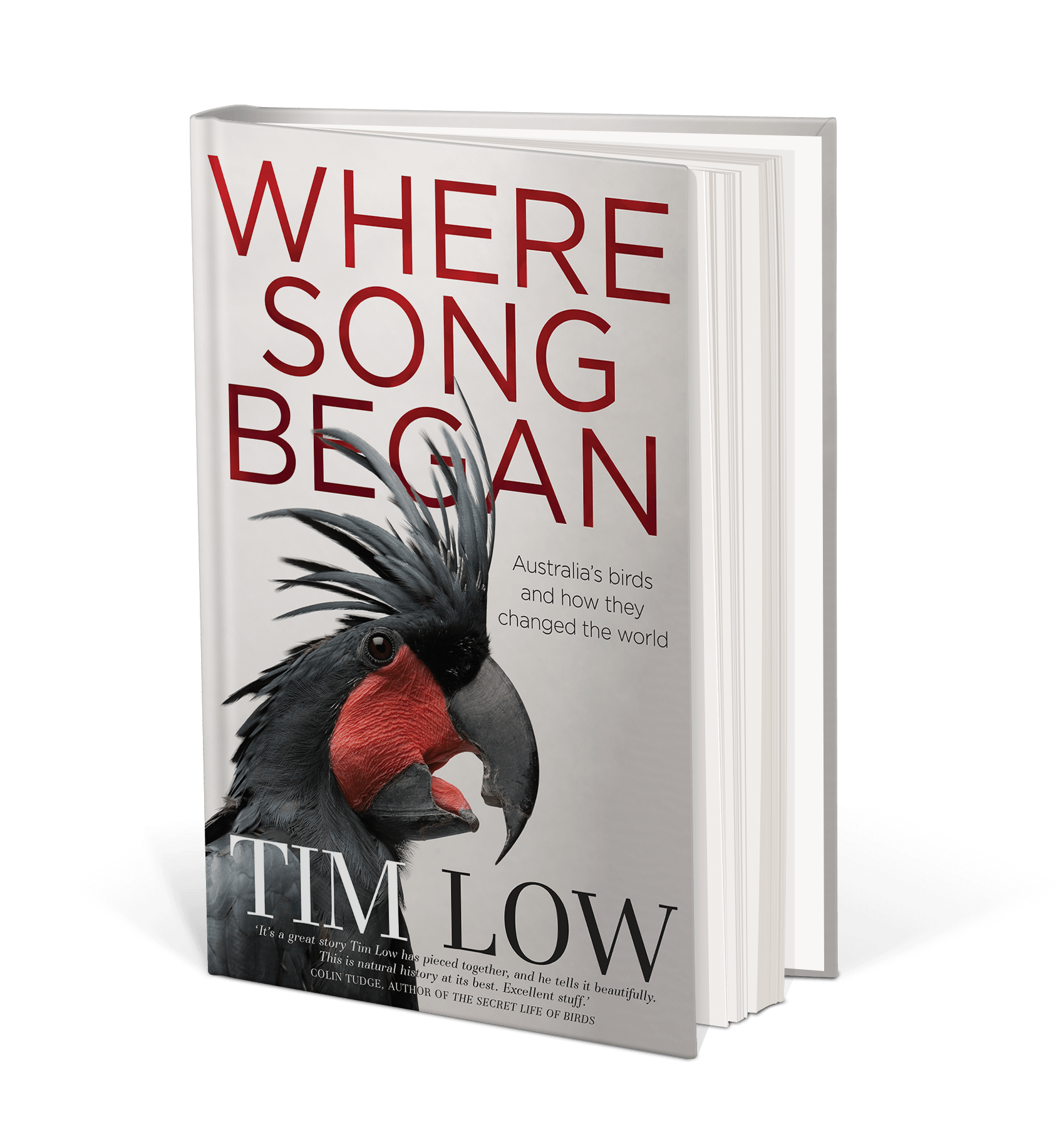 Cover art for Where Song Began : Australia's Birds and How They Changed the World